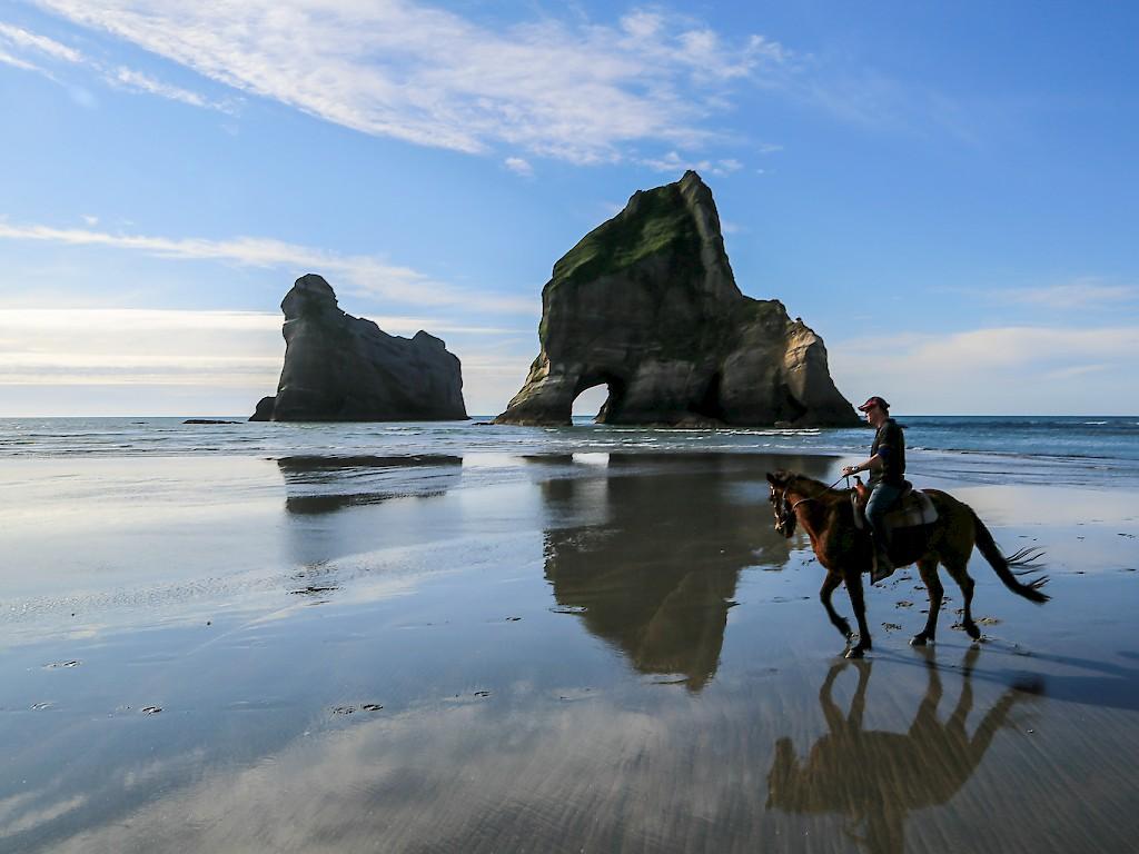 Horse Trekking Nz South Island