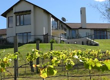 NZ vineyard accommodation